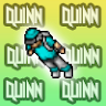 Quinnxdsa